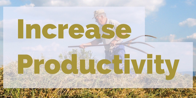 Increase Productivity and Free Up Time