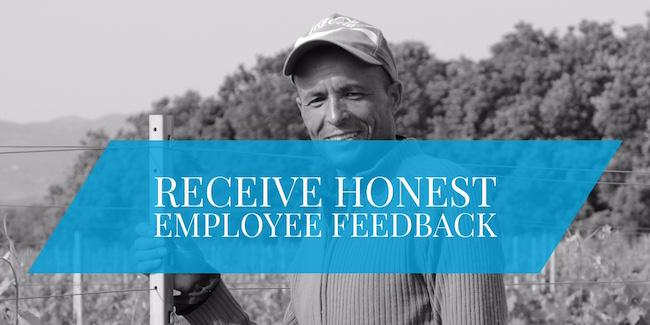 receive honest feedback
