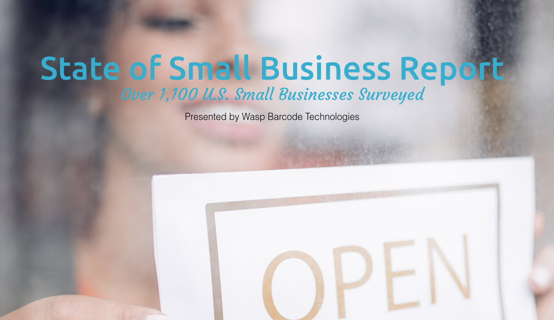 state of small business 2017