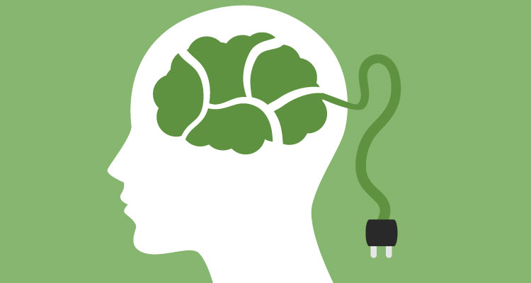 plugin and train your brain